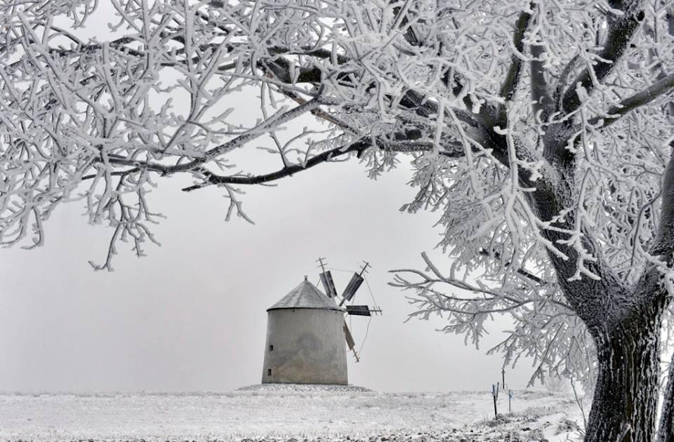 Varázslatos látvány a behavazott Bakony MTI Fotó: Máthé Zoltán
